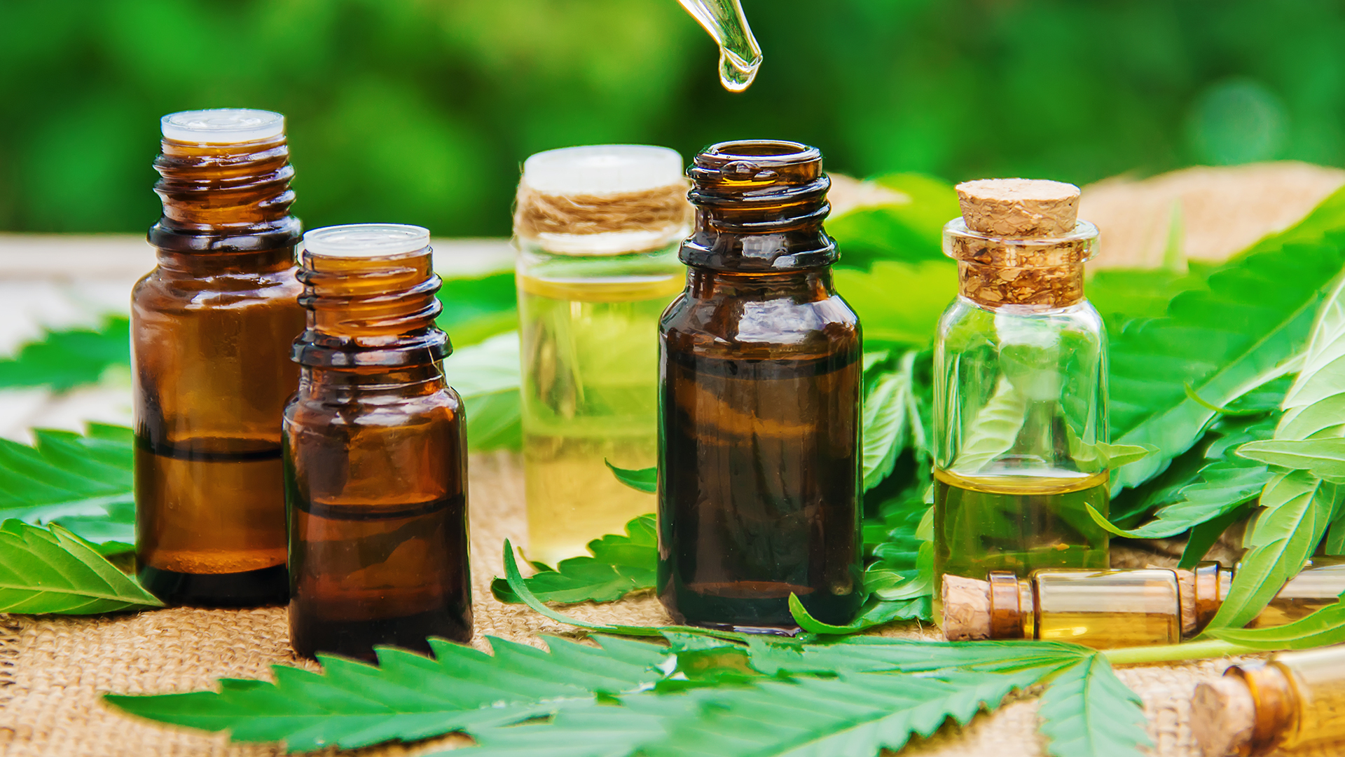 CBD Shop significant and relevant within the market in Germany